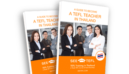 What is the PPP English Teaching Methodology? | SEE TEFL